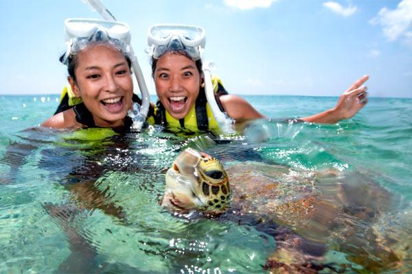 宮古島感動体験!ウミガメと泳ぐシュノーケル